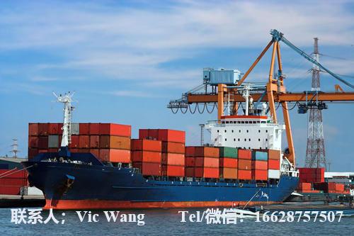 上海到的黎波里 TRIPOLI专线危险品海运拼箱免费黄色视频的黎波里 TRIPOLI到上海海运专线险品拼箱货运代理框架箱/危