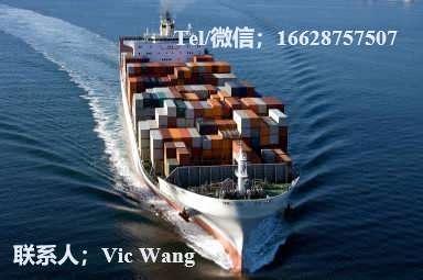 上海到巴塔 BATA专线危险品海运拼箱价格巴塔 BATA到上海海运专线险品拼箱货运代理框架箱/危险品拼箱/化工品